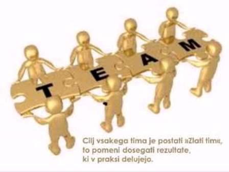 timsko_delo